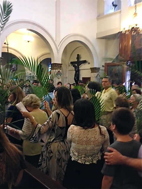 Fotos da Missa com Benção dos Ramos e Procissão