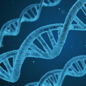 Ética cristã e clonagem humana
