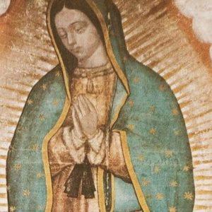 Conselho Episcopal Latino Americano convida para o Dia Continental de Oração pela Paz