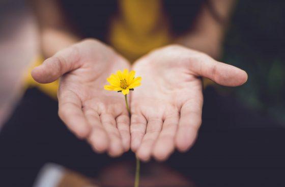Ser generoso é muito mais do que ser apenas justo